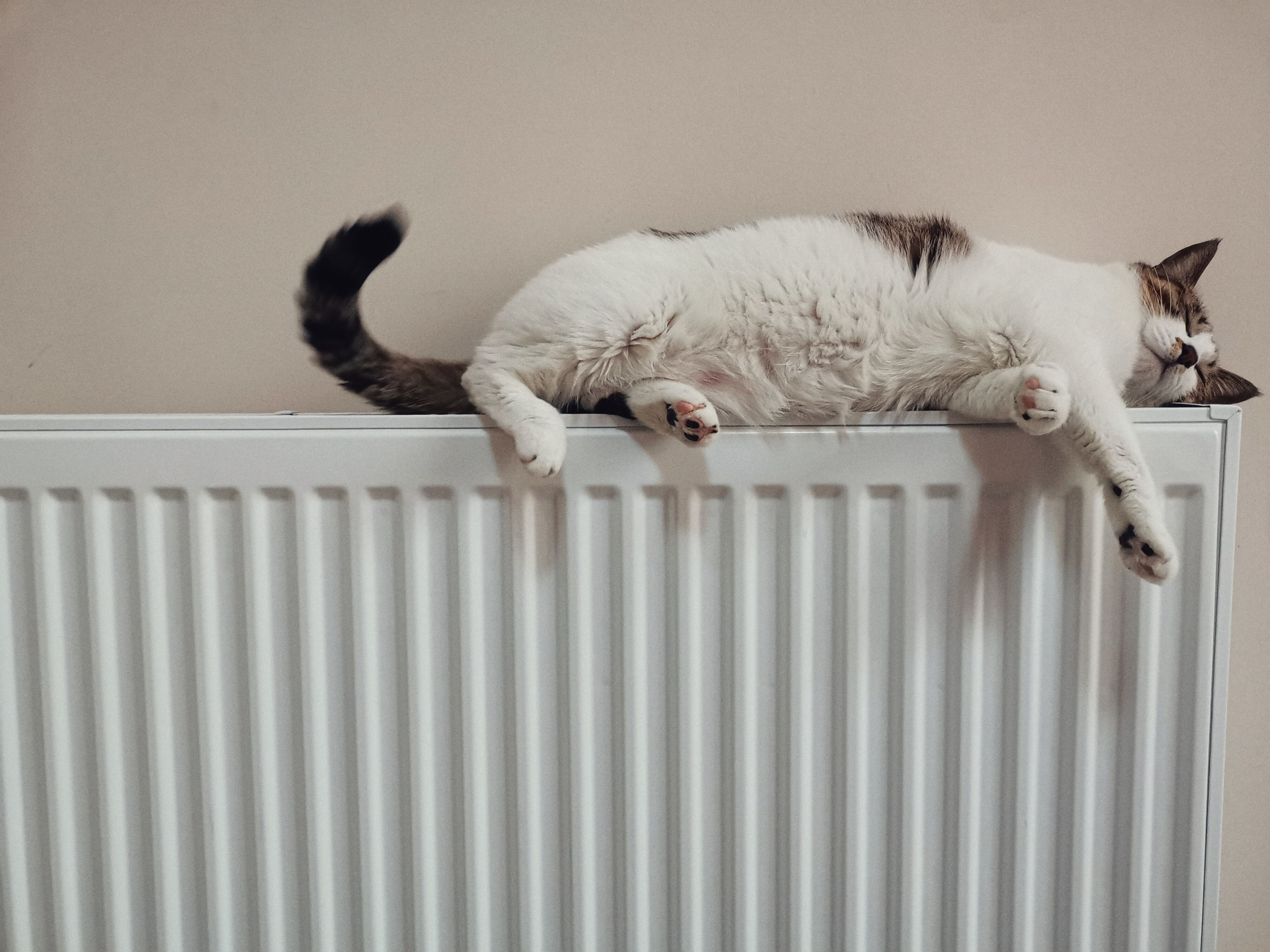 How to balance your home radiator?